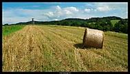 letní krajina :)