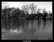 Loučecký rybník