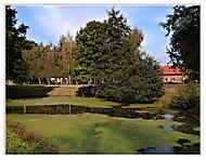 Vesnický rybníček.