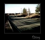 stíny na cestě