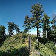 zde stával hrad Velešov