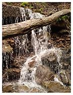 Přítok potoku Satina