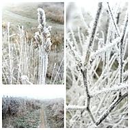 Dnes trošku mrzlo