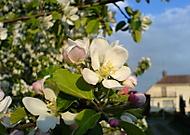 Jaro je kouzelný