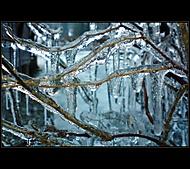 Ľadové zovretie