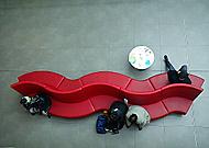 Červený had