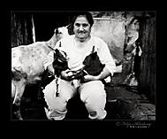 Teta s kozami