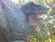 Tyranosaurus REX!