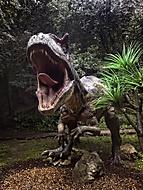 Dino útočí