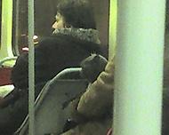 kocour v tramvaji