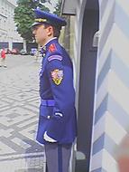Hradní stráž 2