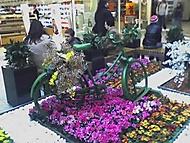 Jarní jízda