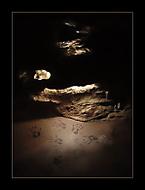 život je tápání ve tmě...