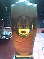 ryzí pivo z hor