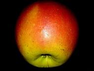 Jablko2