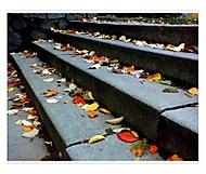 Podzim odchází