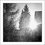 Padá sníh