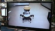 robot co všechno donese do 3 kg