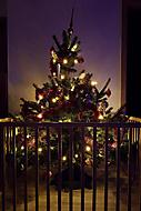 ..:: Krásné Vánoční svátky! ::..