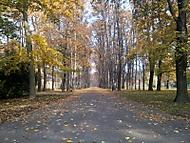 Komenského sady v Ostravě