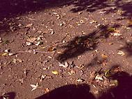 venku pri posedu na lavce