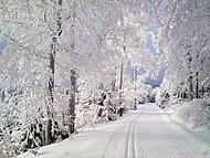 Skvostná zima
