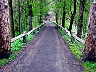 Cesta od hradu a zámku Hartenberk na Hřebenech...