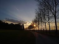 Podvečerní procházka