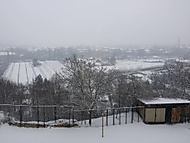 Výhled ze školy