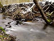 U zimního potoka 3