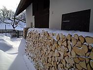 Dřevo sněhem zaváté....