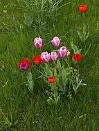 2013-05-05_15_03_50