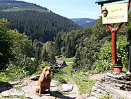 Denis na horách