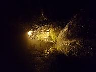 Půlnoční cesta k chatě