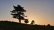 Bukovec sunset