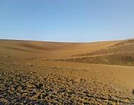 ...jihomoravská  ,Sahara,  :-)