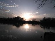 Procházka kolem rybníka