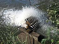Oderské rybníky