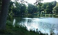 Jemnice - park