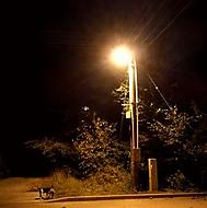 Noční  snímek