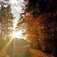 Podzimní podvečer