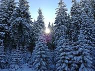 první sníh na horách