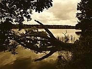 Rybník Naděje