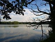Purkrabský rybník