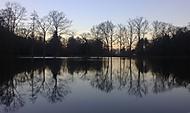 Rybník v Raduni