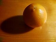 Ukázková- pomeranč za tmy