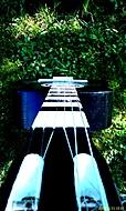 moje  kytara  foceno za zahradě jeno trochu dpladění jasu a kovtrastu jinak