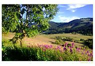 Aj v lete je krajina plná kontrastov a farieb...