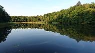 Malý Bolevecký rybník v Plzni