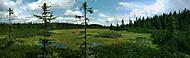 Černohorská rašeliniště
